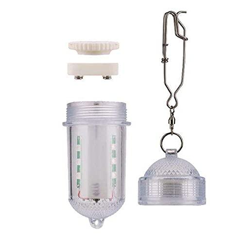 Amagogo Luz de Pesca Submarina, LUTE Bait Light Finder NUCTURY Light, Luz de Caída Profunda Sumergible en Barco, Lámpara de 12 LED Y 32.8 FT Cable para Calama - Blanco