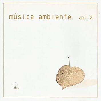 Música Ambiente, Vol. 2