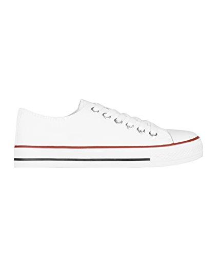 KRISP Zapatillas Mujer Tipo Estilo Imitación Casuales Lona Cordones Baja Alta Puntera Goma, (Blanco (2345), 37 EU (4 UK)), 2345-WHT-4