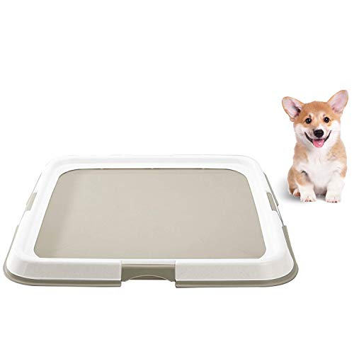 Best Dog Training Pads Uk