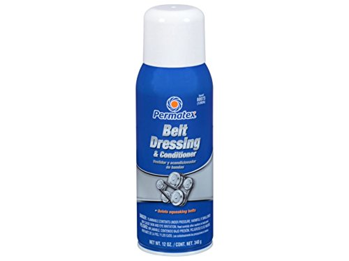 serpentine belt noise
