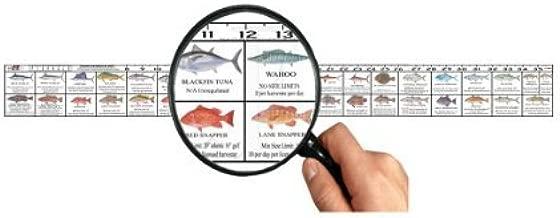Predator Marine Texas Saltwater Fish Ruler Decal