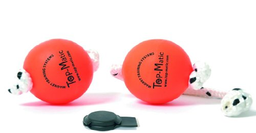 Top-Matic Magnet trainings Ball für Hunde