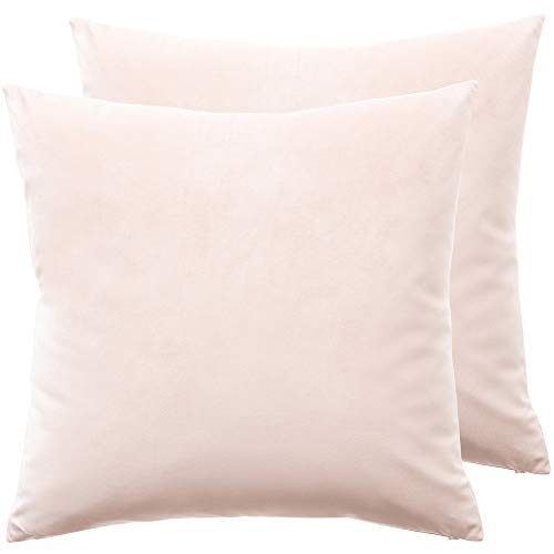 lalaLOOM Premium Luxurious Velvet Pillow Covers, 20x20, Set of 2 Softest Decorative Square Throw Pillowcases, Hidden Zipper, Washable, Velvety Cases for Living Room Couches, Sofa, Bed, Petal Pink