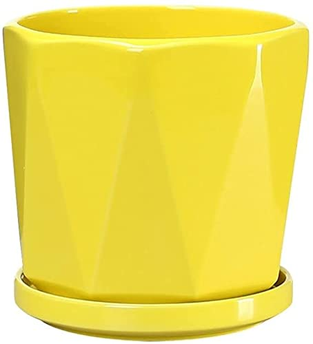 WANIYA1 Gran plantador de cerámica Suculents sembradora Maceta jardín al Aire Libre Planta macetas Modernas geométricas cerámica Bonsai macetas Plantas Plantas contenedores con Saltador de Salsero de