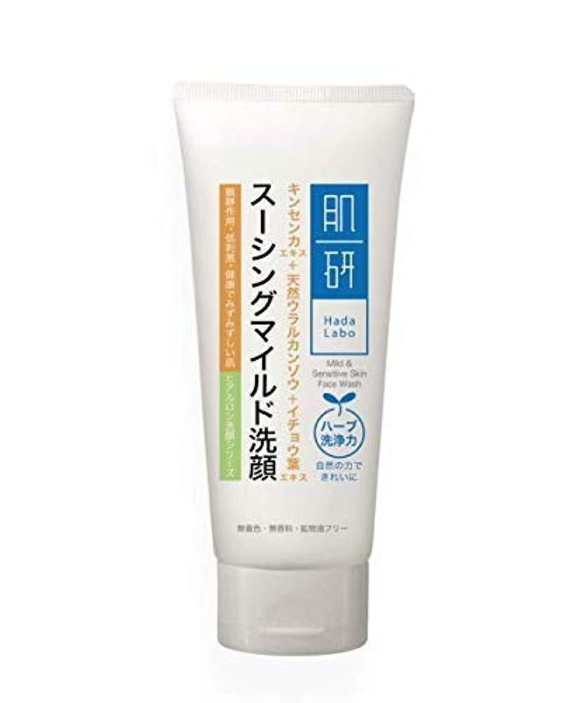 拮抗する義務しっかりHADA LABO 100グラムマイルド洗顔&敏感