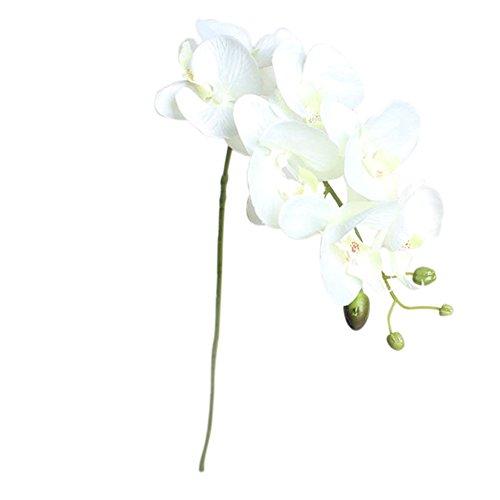 Vi. yo 1 stücke Künstliche Schmetterling Orchidee Blume Pflanze Hochzeit Haus Partei Home Deko, weiß, 78cm
