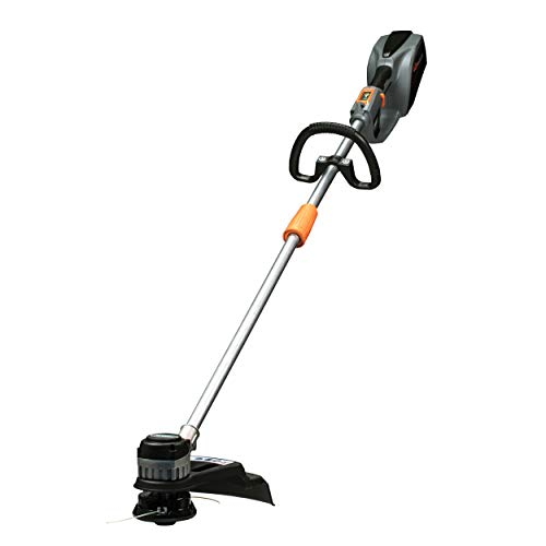 Best Buy! Scotts Outdoor Power Tools LST01540S 40-Volt 15-Inch Cordless String Trimmer, 2Ah Battery ...
