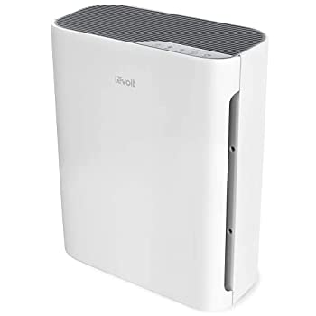 air purifier for removing cooking odors