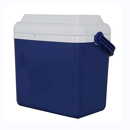 LIYANLCX Kühlbox Auto Kühlschrank, Wärmer & Kühler 2 Modi, tragbare Gefriertruhe mit Griff für unterwegs, Camping - 12L