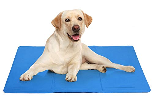 DZL Cama resfriante para Mascotas - Manta fría 50x40cm para Perro Gato Alfombrilla de refrigeración Azul (40 * 50CM)