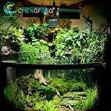 VISTARIC 2016 500pcs semillas de la hierba del acuario (mezcla) de agua semillas de la hierba acuática (15 tipos) Semillas de Plantas hidroponía colores de la mezcla