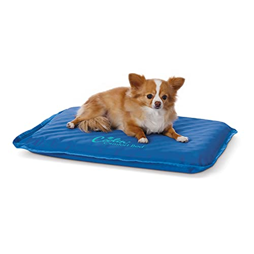 K&H 771704 Coolin' Comfort Bed, kühlendes Hundebett