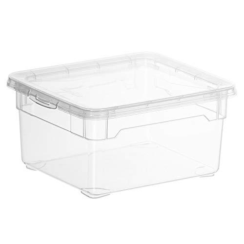 Rotho Clear Box Small Aufbewahrungsbox 2 l mit Deckel , Kunststoff (PP), transparent, 2 Liter (19 x 16,5 x 9 cm)