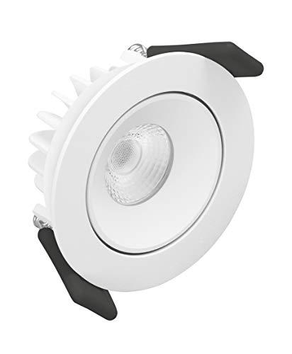 LEDVANCE LED Spotlight | Leuchte für Innenanwendungen | Warmweiß | 80,0 mm x 36,0 mm | SPOT ADJUST