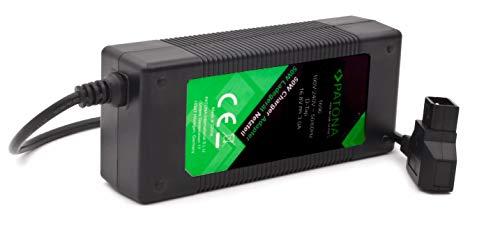 PATONA Fuente de alimentación D-Tap (3 A) Cargador para baterías V-Mount, videocámara, luz Continua, etc.