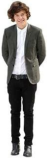 Harry Styles (Grey Blazer) Mini Cutout