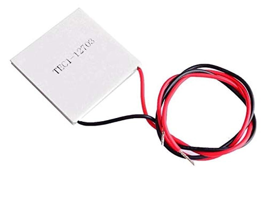 レンダリング科学者銅WillBest TEC1-12703 Thermoelectric Cooler Peltier 40 * 40MM 15.7V cooler equipment
