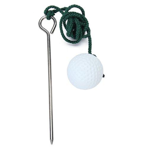Saber Donde Golpes La Bola en El Palo De Golf