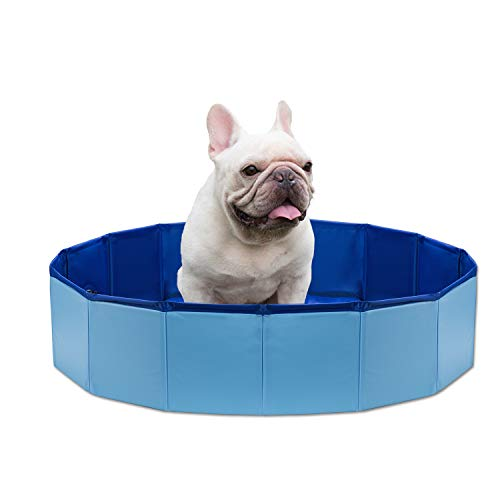 doggie pool