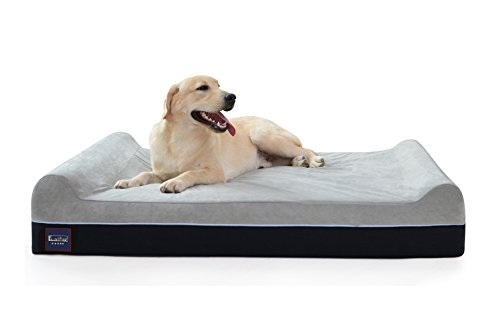 Laifug Orthopedic Memory Foam Bed