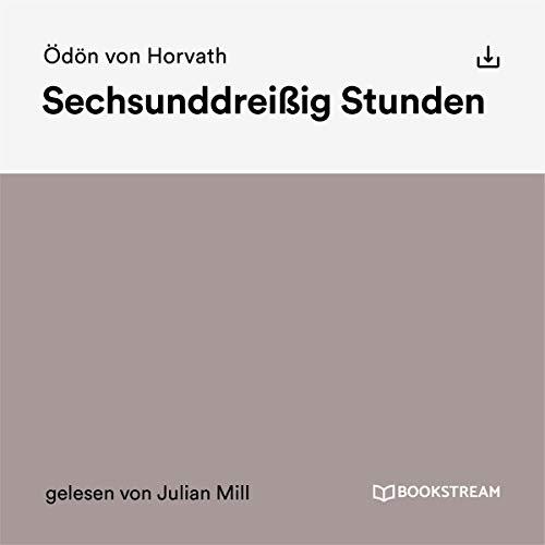 Sechsunddreißig Stunden audiobook cover art