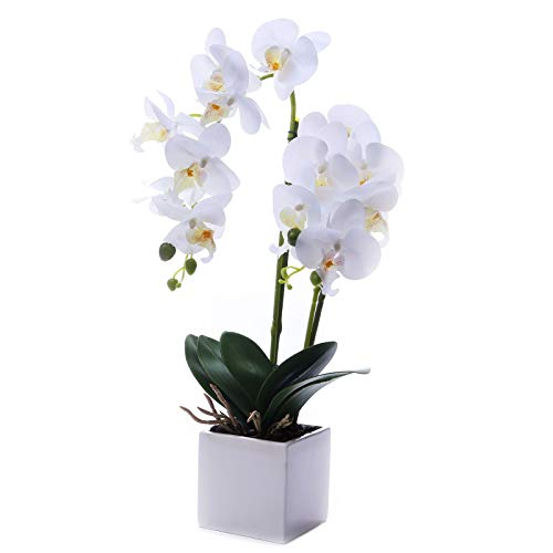 GXLMII Artificial Flower Bonsai with Vase, Large Vivid Orchid Plant Arrangement Phalaenopsis Wedding Party Home Centerpiece Decor White