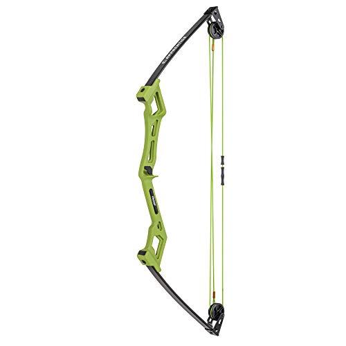 Bear Archery Apprentice Bow Set