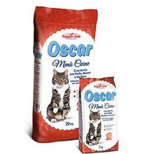 gatto mangia solo croccantini migliore guida acquisto