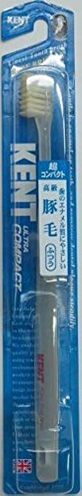 浮くほめる不利益KENT(ケント)豚毛歯ブラシ ふつう 超コンパクト