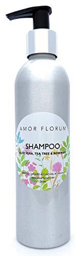 Natural CHAMPÚ - ALOE VERA, ROMERO Y ÀRBOL DEL TÈ - 250 ml por AMOR FLORUM. Sin Sulfatos, Sin Parabenos. Concentrado, Fàcil de Enjuagar, pH 5.5. 99,5% Derivado de Plantas. Promueve el Crescimiento