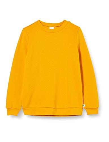 Fred's World by Green Cotton Boys Sweatshirt, Sunflower, 122