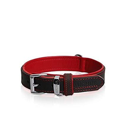 Michur Oleo, ein weiches und starkes Hundehalsband aus Leder / Lederhalsband für Hunde! Das Modell Oleo Rot ist aus braunem Leder mit edlen roten Ziernähten und einem Zusatzring für die Hundemarke. In der Gesamtlänge 51cm und 3cm Breite, ist es geeig...
