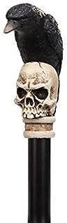 Best raven skull cane Reviews