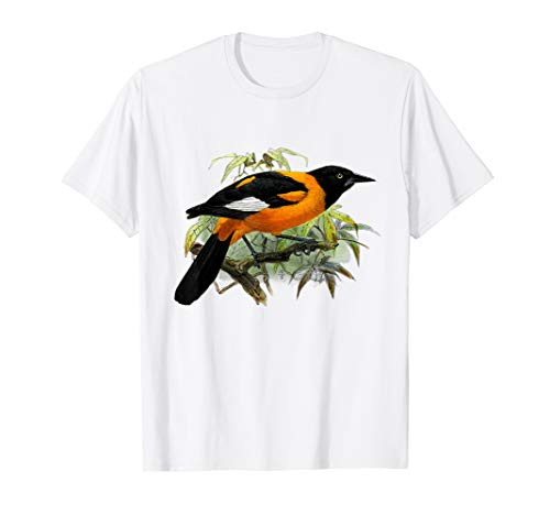 Vintage Oriole bird common in Baltimore Maryland T-Shirt
