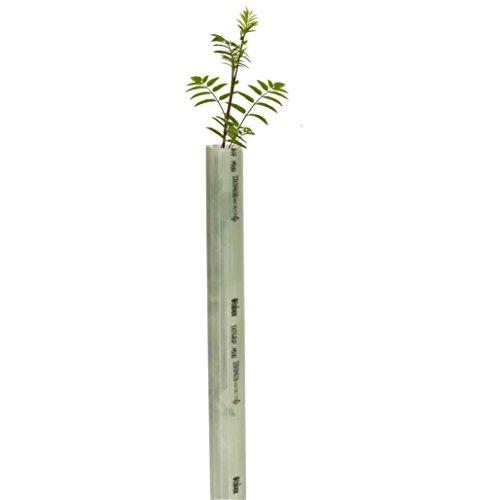 Tubex Easywrap Obstbaumschutz, Wuchshülle und Verbissschutz speziell für Obstbäume, 60cm Höhe. Ø 50-65mm, hellgrün (20)