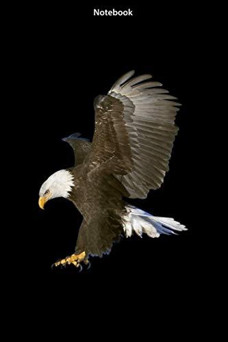 Notebook American Bald Eagle Swooping: Notebook Journal