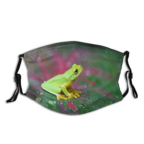 Weda Máscara de rana para adultos con filtro, máscara facial para exteriores, lavable, reutilizable, protección ajustable, filtro de carbón activado de 5 capas (unisex)