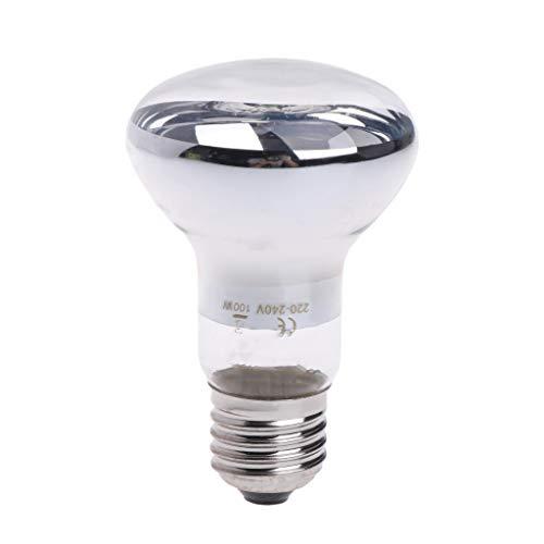 Yanhonin - Bombilla calefactora para reptiles y anfibios, luz nocturna emitida por infrarrojos, 220 - 240 V (100 W, transparente)