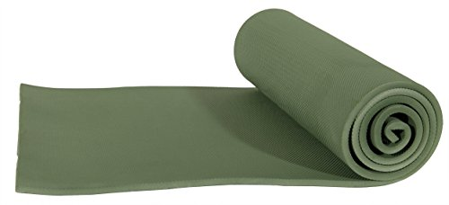 ALPS Mountaineering Foam Camping Mat (Regular 375), Green