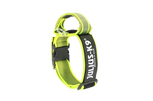 Julius-K9 200HA-K-NE-2015 Color & Gray Halsband mit Haltegriff, Sicherheitverschluss und Logo, 50 mm*49-70 cm, verstellbar, neon-grau