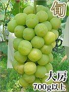 秋旬の桃太郎ぶどう 大房 1房700g以上 【皮ごと種なし】 岡山県産