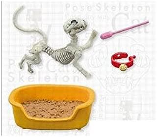 Pose skeleton cat by FALSE