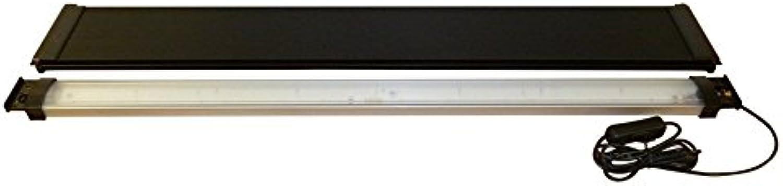 Fluval Roma LED Retrofit Kits 200
