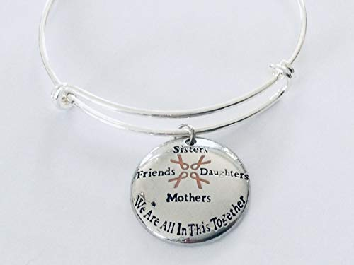 Sisters Friends Mothers Daughters Pink Awareness Ribbon Jewelry Silver Expandable Charm Bracelet Adjustable One Size Fits All We Are All In This Together