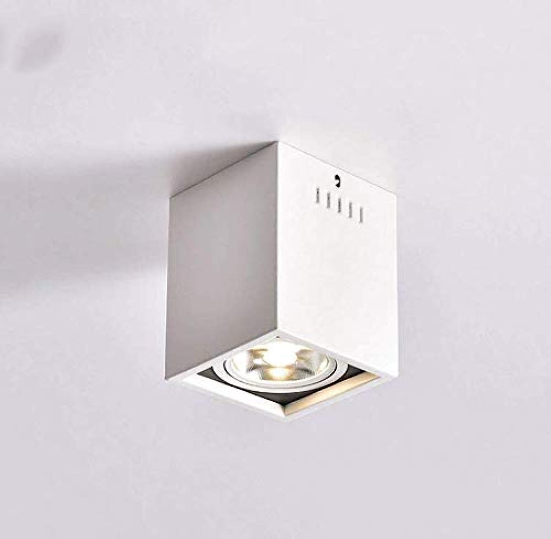 Led Unterbauleuchte Lichtleiste Deckenlampeled 3W 5W 7W Aufputz Schmiedeeisen Deckenleuchte Wohnzimmer Schlafzimmer Gang Bekleidungsgeschft Wandstrahler (Farbe  Wei-3W)