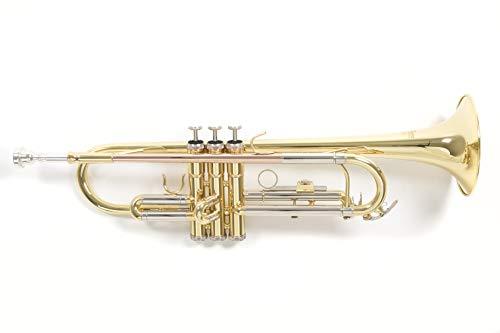 Roy Benson Rb701070 Tromba in Sib Tr-202, Finitura Laccata, Astuccio Rettangolare