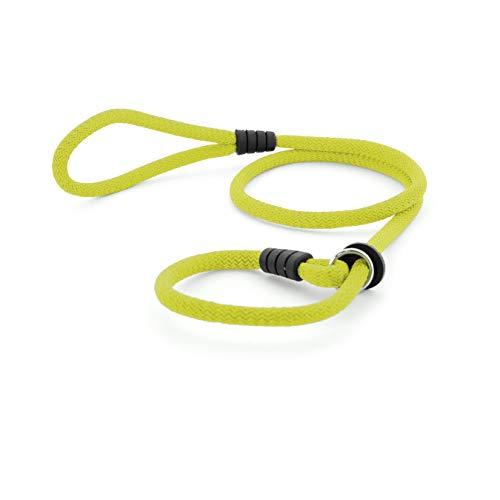 Correa de Perro para Adiestramiento - Correa de Entrenamiento para Perros Medianos y Grandes - Collar y Cuerda con Regulador - 150 cm x 12mm (Verde Lima)