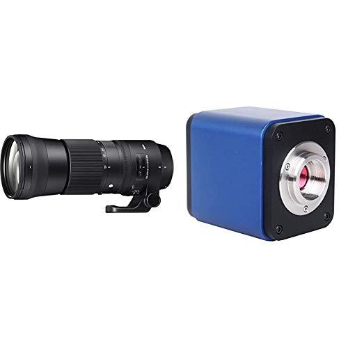 Sigma 150-600mm F5,0-6,3 DG OS HSM Contemporary Objektiv (95mm Filtergewinde) für Canon Objektivbajonett & Walimex Pro UV-Filter Slim MC 95mm schwarz