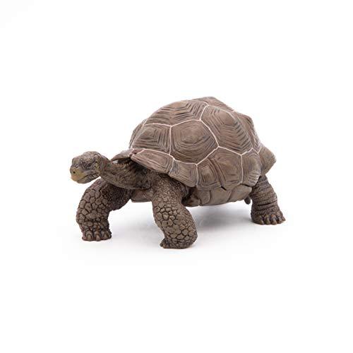 Papo- Figura Tortuga Galapagos 11X6X5,3CM, Multicolor (50161)